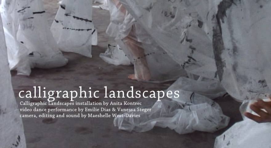 calligraphic landscapes from anita kontrec and maeshelle west-davies